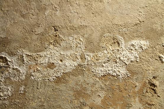 Traitement du salpetre dans un mur
